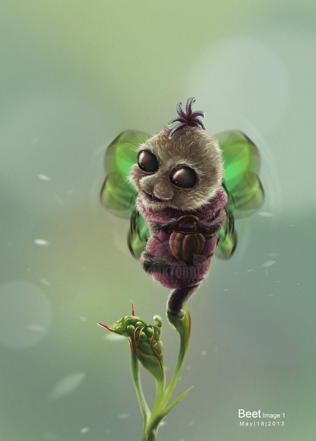 insect by MICKEYTORRES