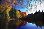 Herbsttage 1