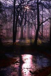 Purple Sunrise symphony by AStoKo