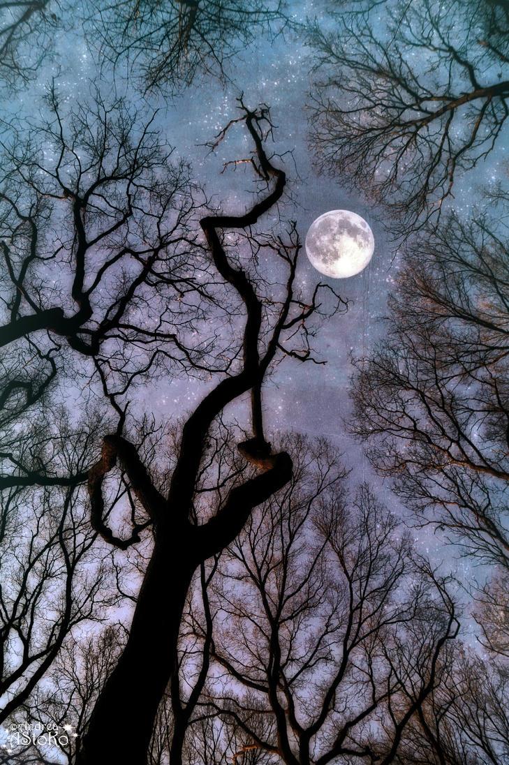 Luna Inspiration 1 by AStoKo