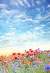 Poppy Field Premade soft color