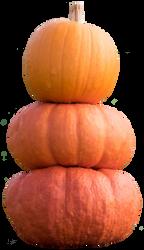 pumpkins 2 STOCK by AStoKo