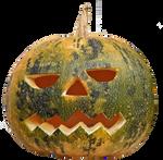 Halloween pumpkin 3 STOCK