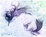 Feathers surreal by AStoKo