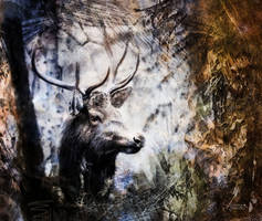 Deer in the forest by AStoKo