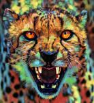 Big Cat ~ Cheetah Colorful