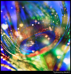 Rainbow Peacocks eye by AStoKo