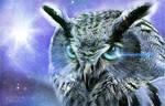 Ice Owl