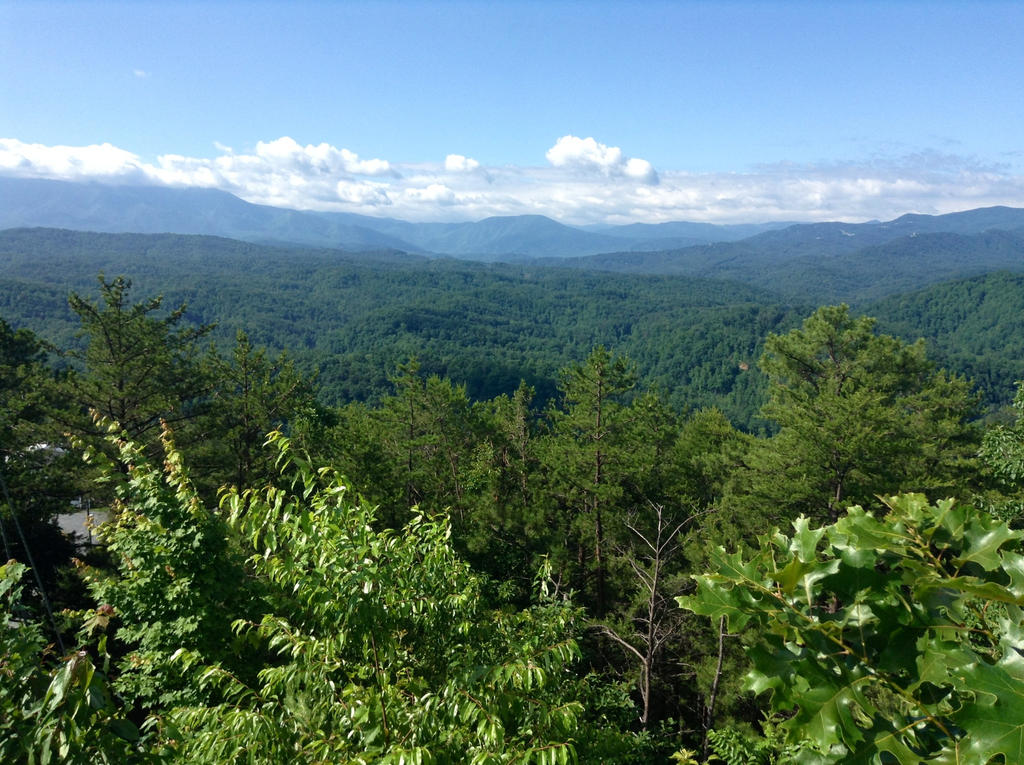 Mountains pigeon forge by landonl1000 on deviantart for Mountain flower cabin pigeon forge