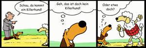 Wienerdog 024