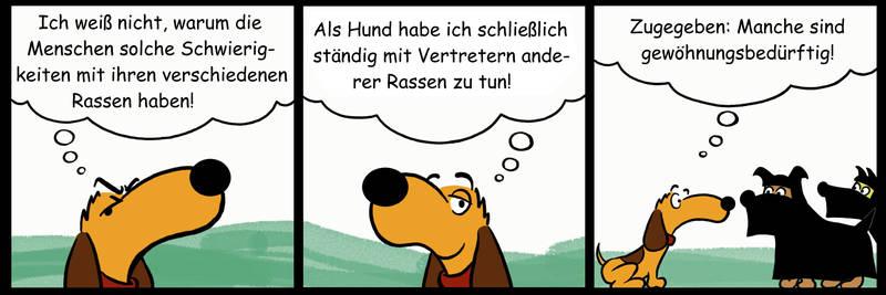 Wienerdog 028