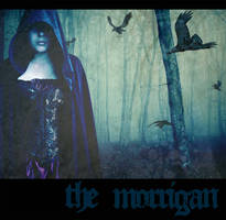 The Morrigan by LadyLuciolaLupus