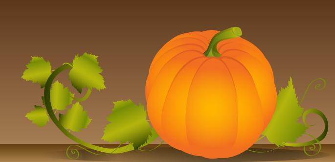 Vector Pumpkin Illustration