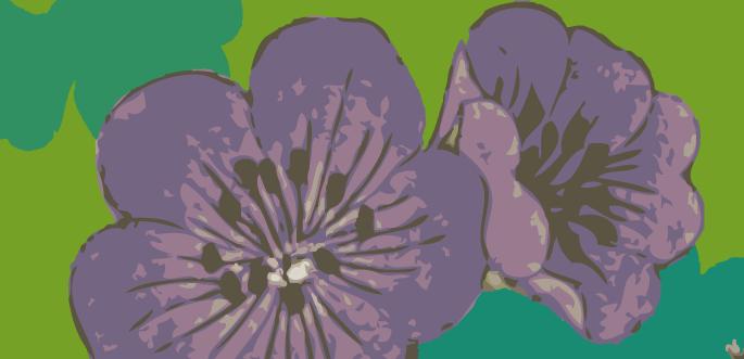 Purple Flower Vector by arsgrafik