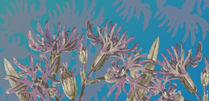 Flower Vector by arsgrafik