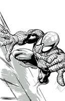 Spider-Man by PhillieCheesie