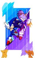 Sonic Rush!!!