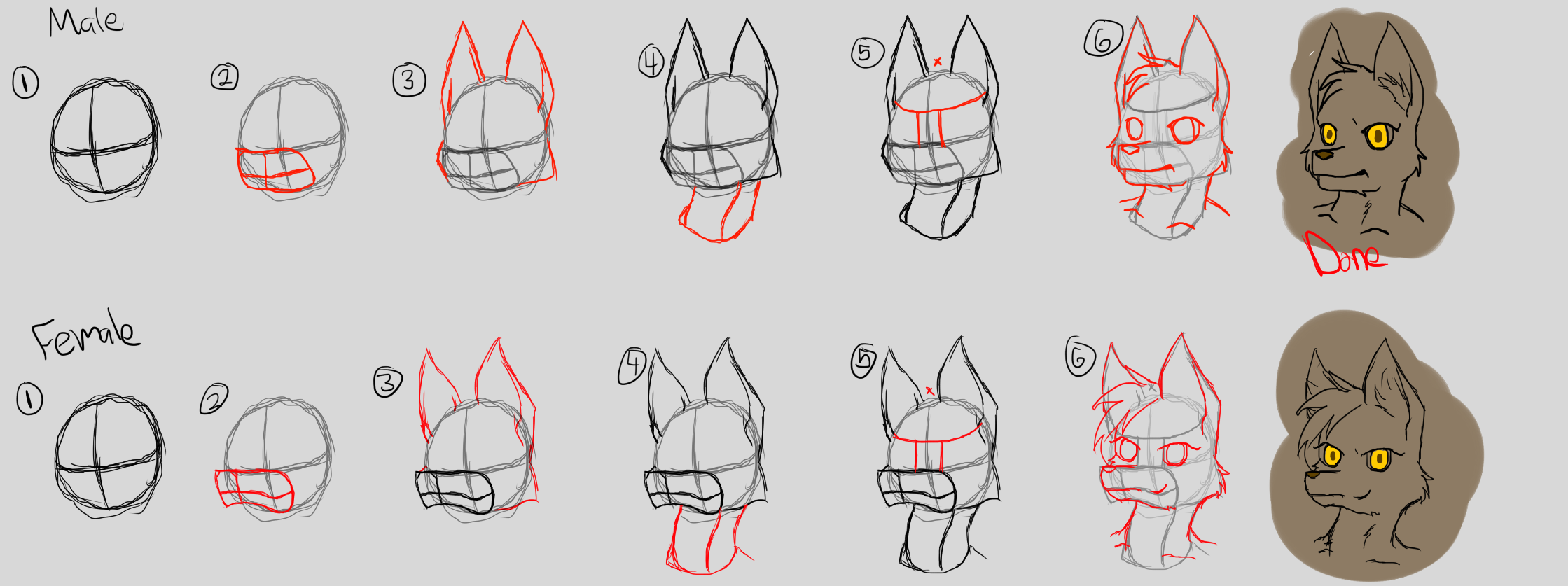 how to draw furry muzzles