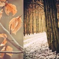 Winterdream by Inside-my-ART