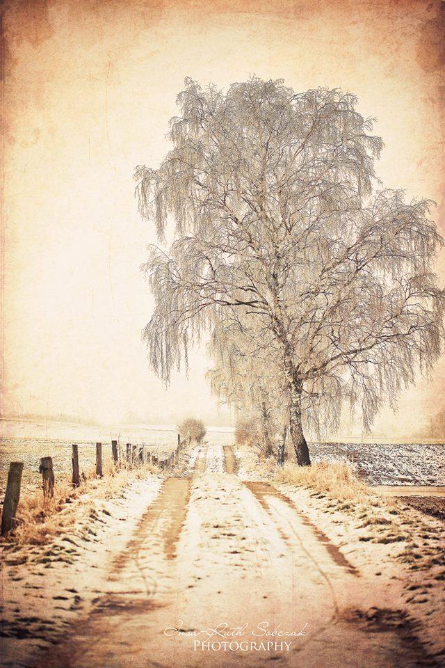 A winterdream by Inside-my-ART