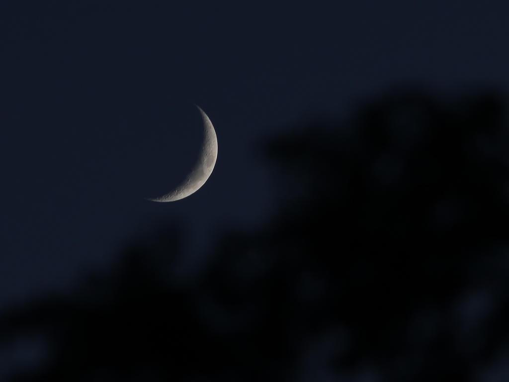 Luna II by vmulligan