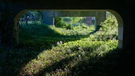 The Secret Garden by vmulligan