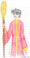 Li'l Quidditch Harry
