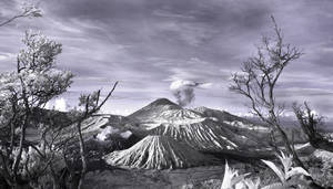 Bromo by fendra