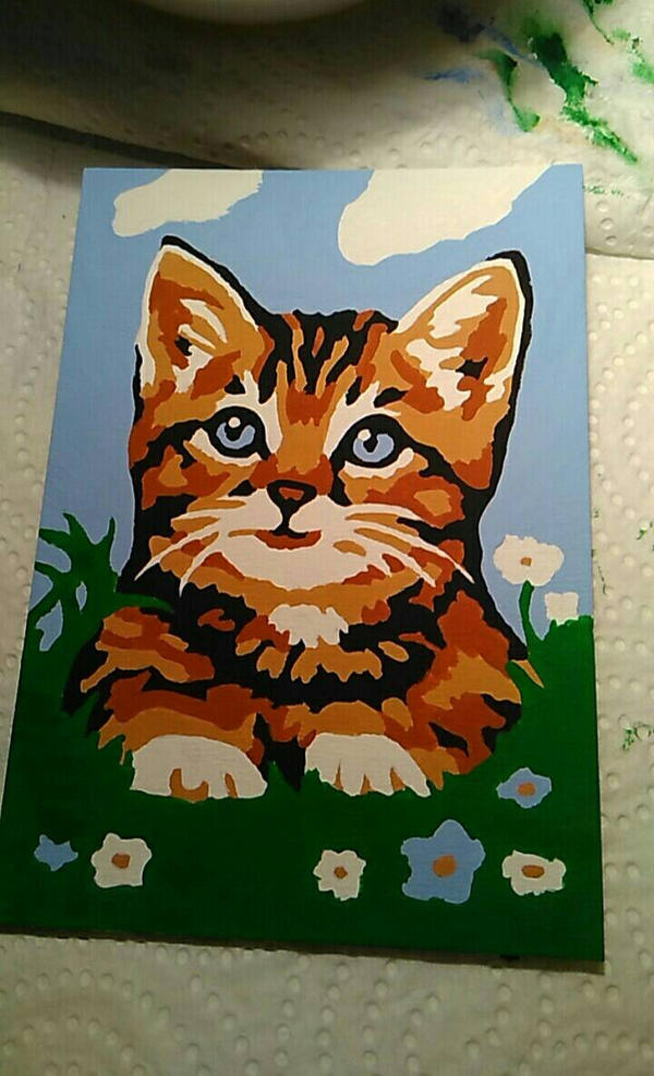 Kitten by Minarya
