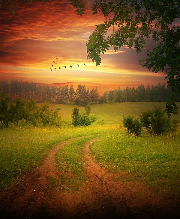 background_6_by_elenadudina-d24yosz.jpg