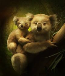 Koalas by ElenaDudina