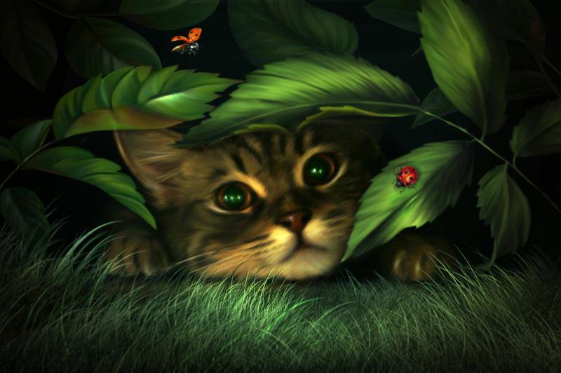 My hiding by ElenaDudina
