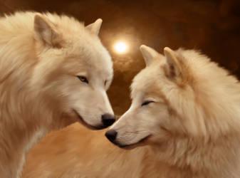 White wolves by ElenaDudina