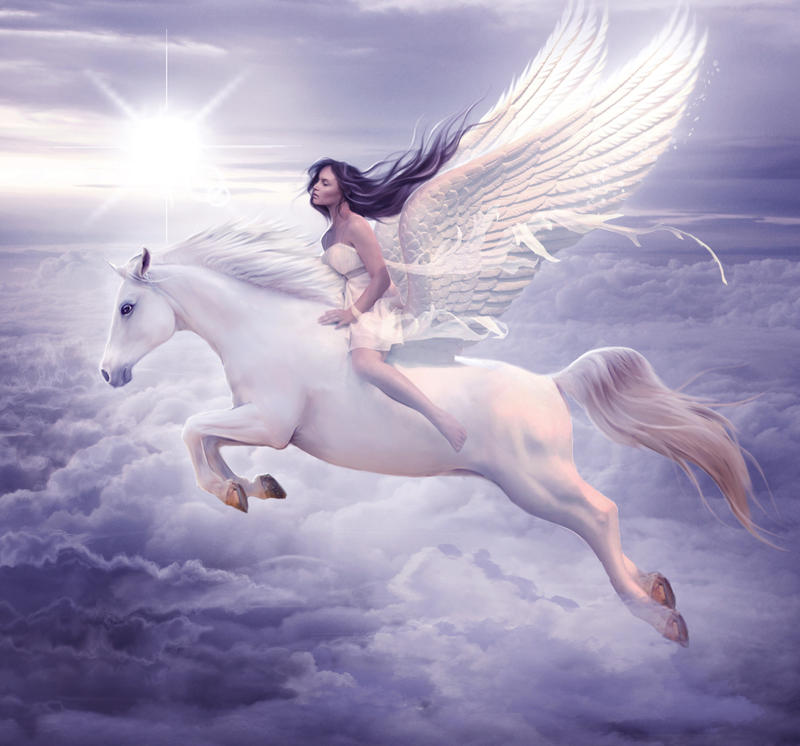 I can fly by ElenaDudina