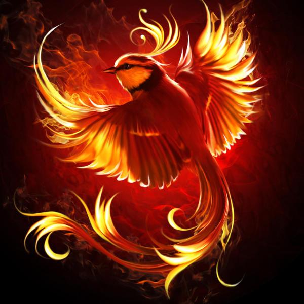 Fire bird by elenadudina on deviantart - Photo de phenix ...