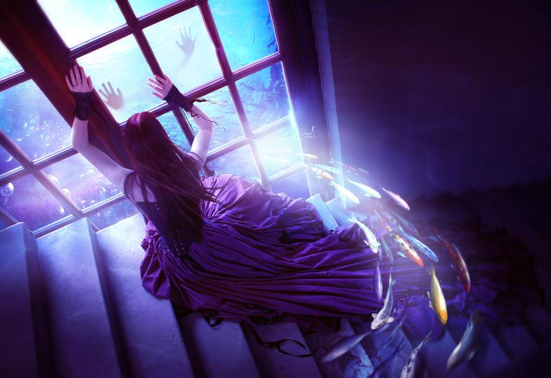 Let me in by ElenaDudina