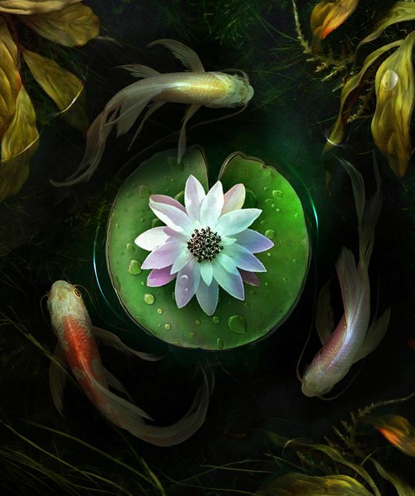 Circles by ElenaDudina
