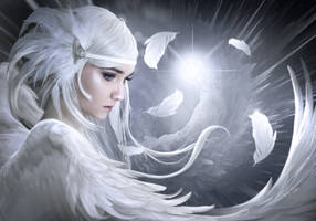 White feathers