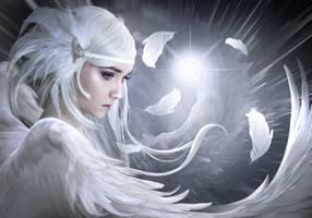 White feathers by ElenaDudina