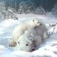 Polar bears by ElenaDudina
