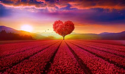 Heart tree by ElenaDudina