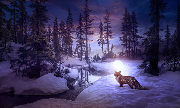 Moon fox