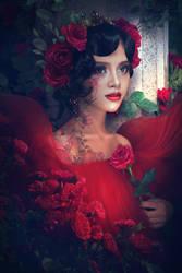 Rose by ElenaDudina