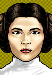 Princess Leia Portrait Shot