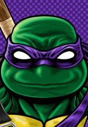 Turtles Donnie Commission