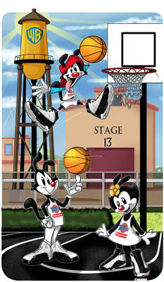 Animaniacs Hoops