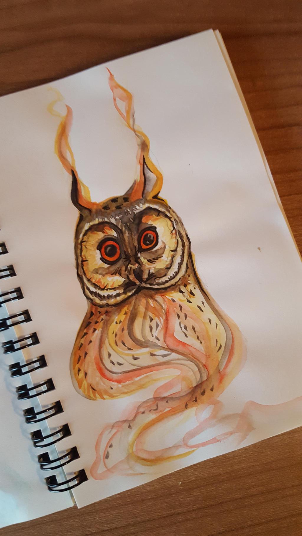 ärgerlicher drache sauna owl