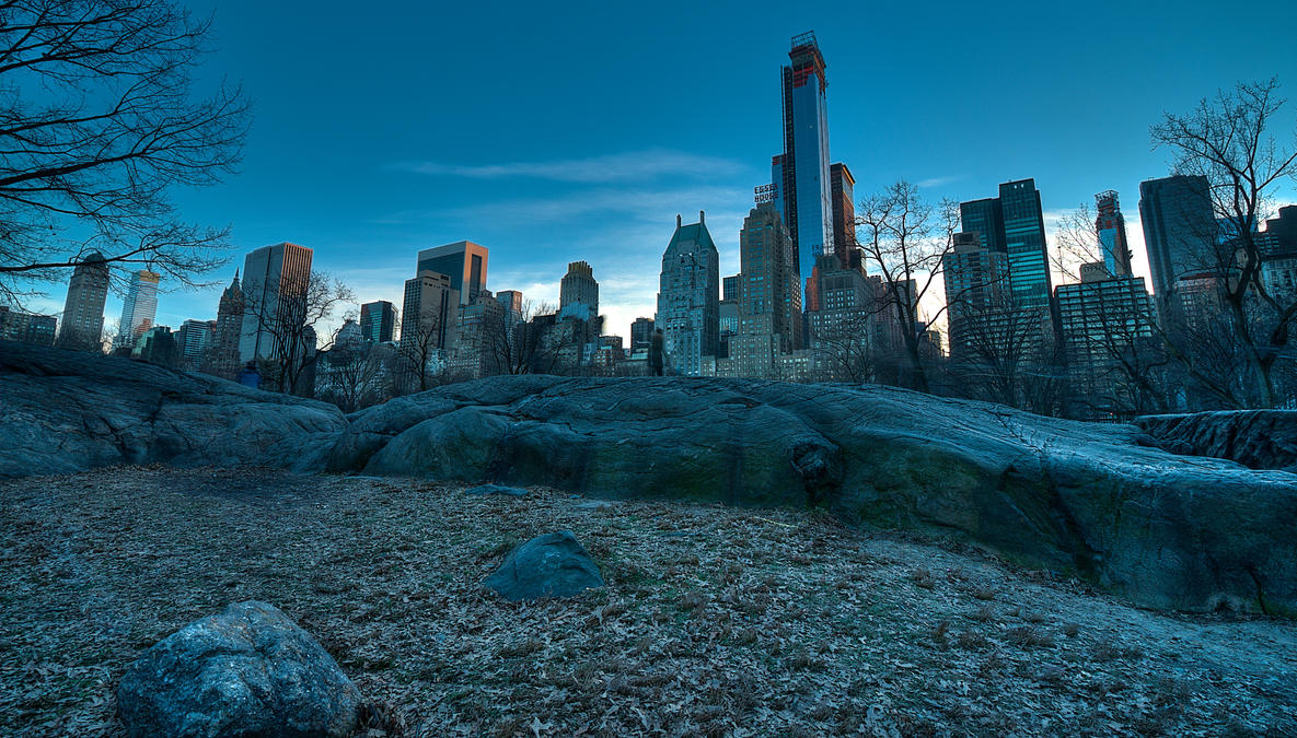 A Winter Evening in Central Park by wmandra