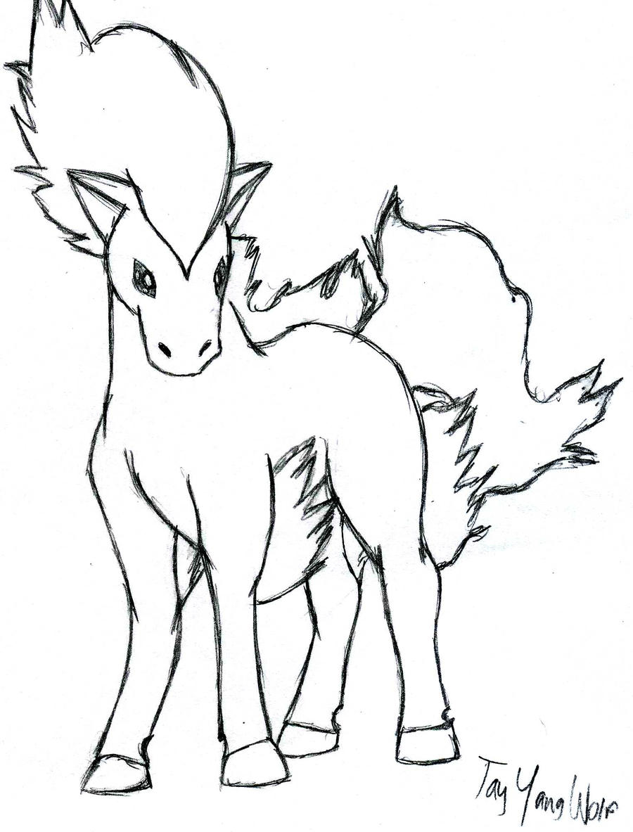 ponyta sketch by tayyangwolf on deviantart