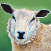 Sheep by drawrae